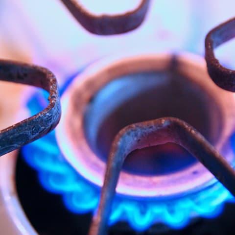 Campos conservas noticias c mo cocinar con responsabilidad medioambiental - Cocinar con conservas ...